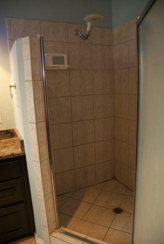 Shower (with door open)