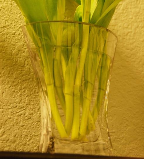 Vase from Hobby Lobby. Reg $7.99 - on sale for $3.98!